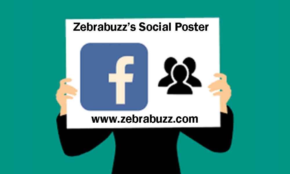 zebra buzz social poster