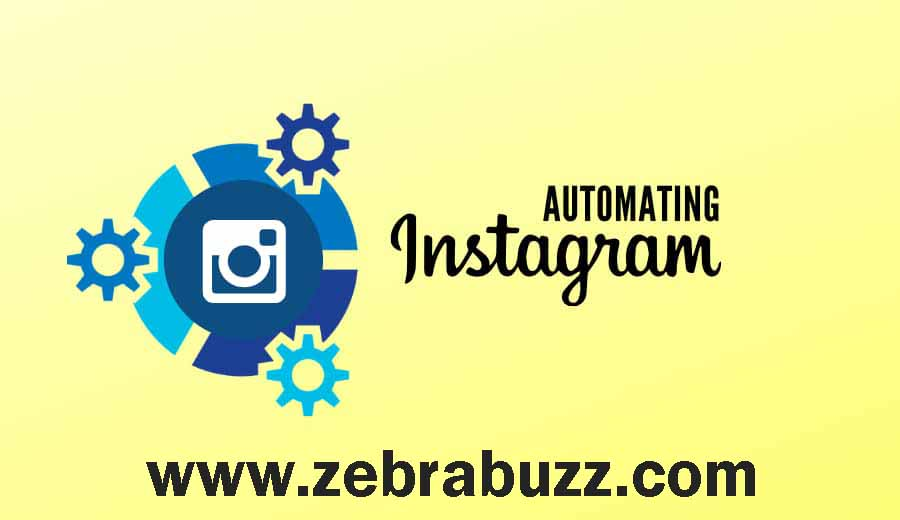 Zebrabuzz's Instagram Auto Comment Reply Feature