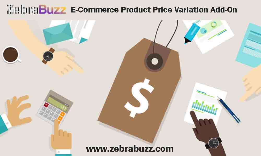 Zebrabuzz's E-Commerce Product Price Variation Feature and How It Simplifies the Sales Cycle