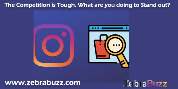 Zebrabuzz Features and Tools that Help you sell Directly on Instagram